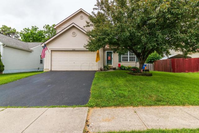 2085 Queens Meadow Lane, Grove City, OH 43123 (MLS #219004929) :: Exp Realty