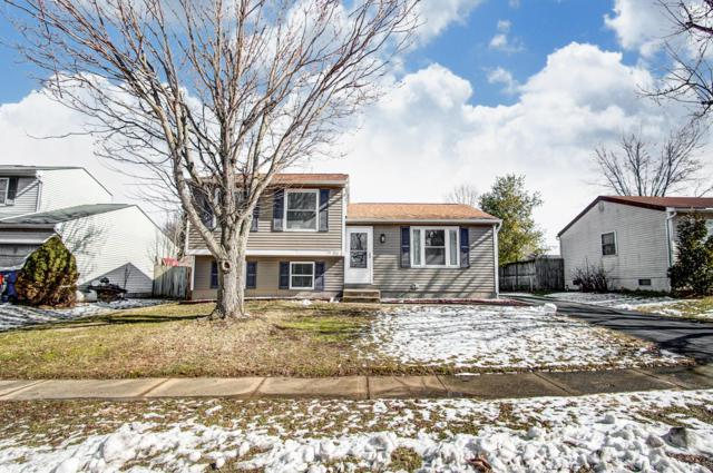 880 Lakefield Drive, Galloway, OH 43119 (MLS #219005005) :: Berkshire Hathaway HomeServices Crager Tobin Real Estate