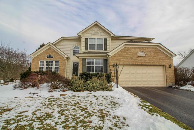 7874 Wiltshire Drive, Dublin, OH 43016 (MLS #219005044) :: Exp Realty