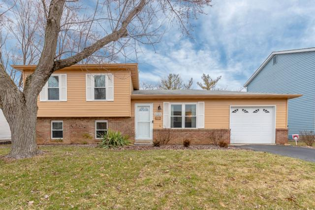 6544 Benjamin Drive, Reynoldsburg, OH 43068 (MLS #219005084) :: The Raines Group