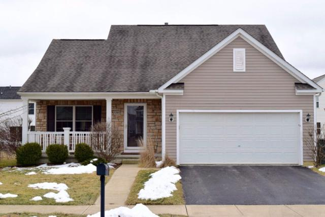 5393 Redwater Drive, Dublin, OH 43016 (MLS #219005109) :: Shannon Grimm & Partners