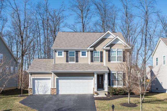 311 Seatrain Drive, Delaware, OH 43015 (MLS #219005241) :: Shannon Grimm & Partners