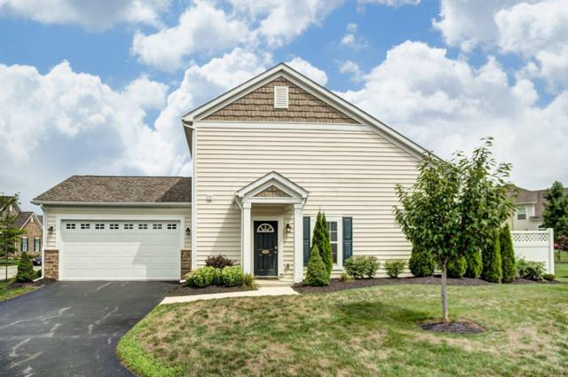 4649 Newport Loop W, Grove City, OH 43123 (MLS #219005547) :: Signature Real Estate