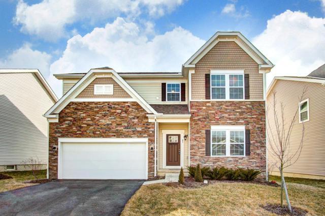83 Carolyn Lane, Delaware, OH 43015 (MLS #219005675) :: RE/MAX ONE