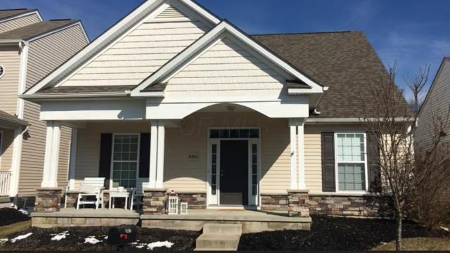 6160 Carlatun Street, Westerville, OH 43081 (MLS #219005732) :: Keller Williams Excel