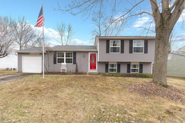 8055 Eliot Drive, Reynoldsburg, OH 43068 (MLS #219005992) :: Shannon Grimm & Partners