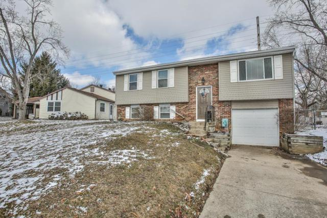 2444 Amethyst Lane, Grove City, OH 43123 (MLS #219006256) :: The Raines Group