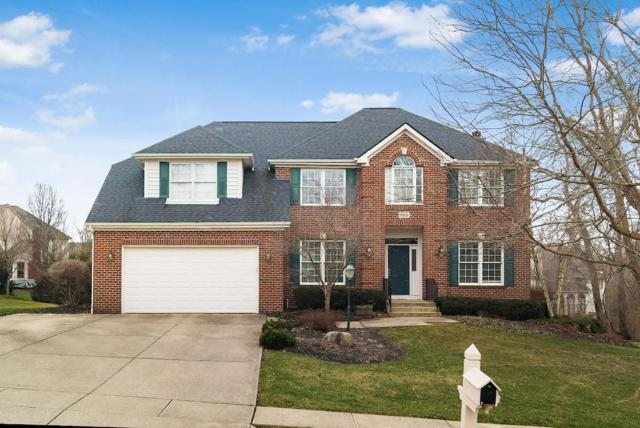 9815 Haverford Place, Pickerington, OH 43147 (MLS #219006449) :: RE/MAX ONE