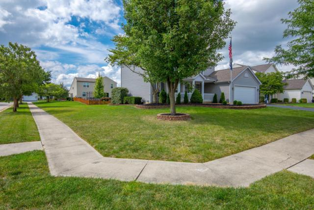 4494 Teabury Square N, Grove City, OH 43123 (MLS #219006460) :: Susanne Casey & Associates