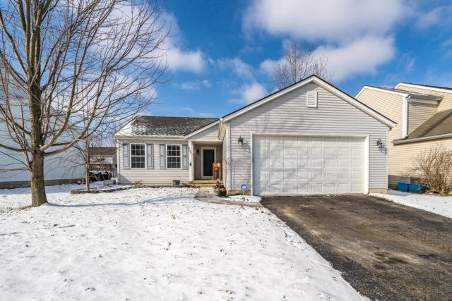 8287 Creekstone Lane, Blacklick, OH 43004 (MLS #219006498) :: RE/MAX ONE