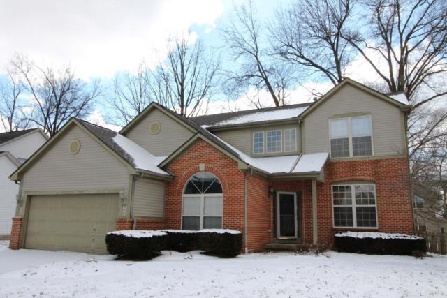 1063 Bergenia Drive, Reynoldsburg, OH 43068 (MLS #219006537) :: Keller Williams Excel
