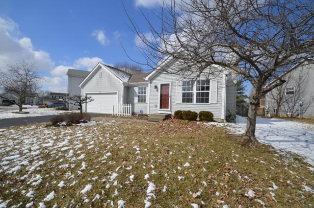 3137 Olympic Club Drive, Pickerington, OH 43147 (MLS #219006588) :: Shannon Grimm & Partners