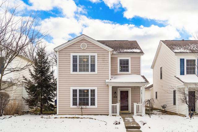 6195 Norway Glen Avenue, Columbus, OH 43230 (MLS #219006701) :: Shannon Grimm & Partners