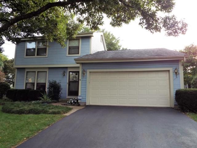 7671 Traphill Court, Columbus, OH 43235 (MLS #219006844) :: Berkshire Hathaway HomeServices Crager Tobin Real Estate
