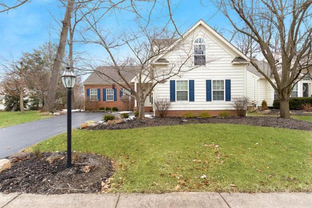 590 Gradall Court, Powell, OH 43065 (MLS #219007106) :: Shannon Grimm & Partners