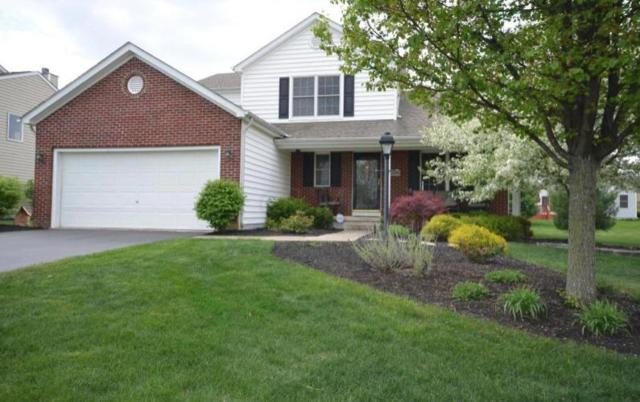 1630 Boxwood Drive, Lewis Center, OH 43035 (MLS #219007150) :: Keith Sharick | HER Realtors