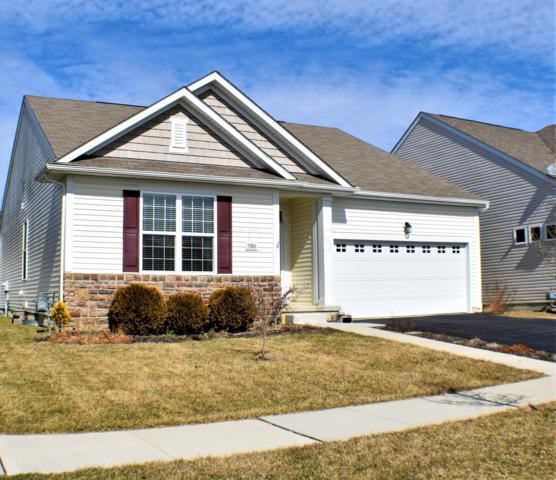 5386 Elk River Drive, Dublin, OH 43016 (MLS #219007262) :: Signature Real Estate