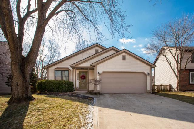 3619 Pinwherry Court, Columbus, OH 43221 (MLS #219007329) :: The Raines Group