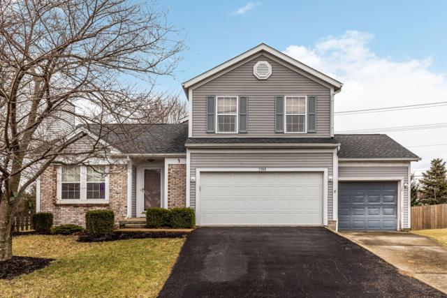 7388 Olympic Club Court, Pickerington, OH 43147 (MLS #219007455) :: Shannon Grimm & Partners