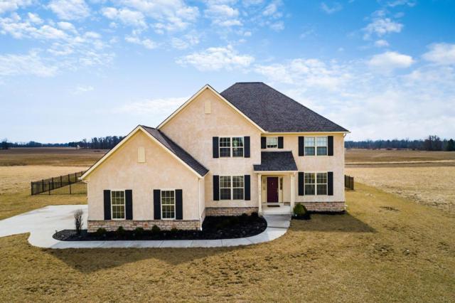 15196 Greyland Drive E, Sunbury, OH 43074 (MLS #219007537) :: Brenner Property Group | Keller Williams Capital Partners