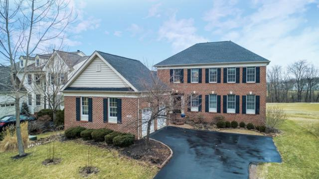 7023 Dean Farm Road, New Albany, OH 43054 (MLS #219007628) :: The Raines Group