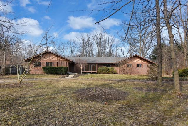 6456 Havens Road, Blacklick, OH 43004 (MLS #219007646) :: Shannon Grimm & Partners