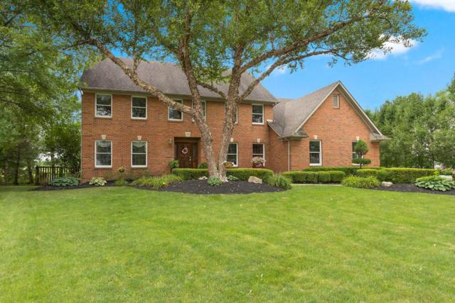 193 Muladore Drive, Powell, OH 43065 (MLS #219007739) :: The Raines Group
