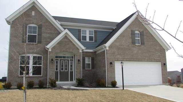 1341 Buckmeyer Drive, Marysville, OH 43040 (MLS #219007843) :: Brenner Property Group   Keller Williams Capital Partners