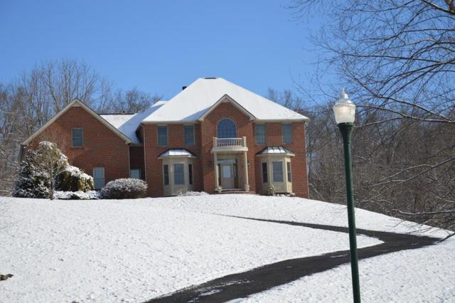 162 Brennan Drive, Granville, OH 43023 (MLS #219007848) :: The Raines Group