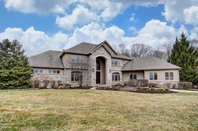 7785 Plumb Road, Galena, OH 43021 (MLS #219007849) :: Brenner Property Group | Keller Williams Capital Partners