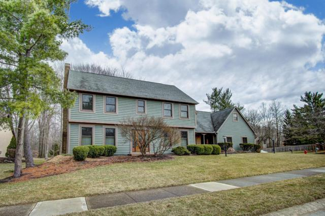 264 Olentangy Ridge Place, Powell, OH 43065 (MLS #219007858) :: Keith Sharick | HER Realtors