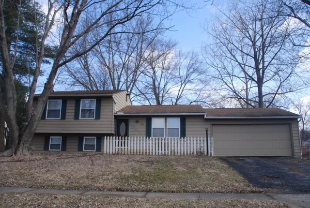 651 Sycamore Drive, Pickerington, OH 43147 (MLS #219007874) :: Keith Sharick | HER Realtors