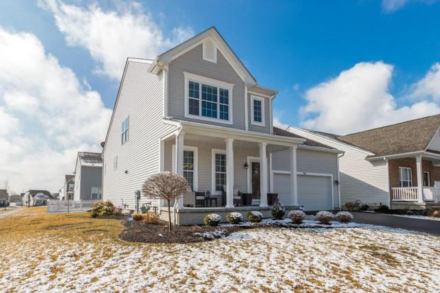 5951 Seldon Drive, Westerville, OH 43081 (MLS #219007887) :: RE/MAX ONE