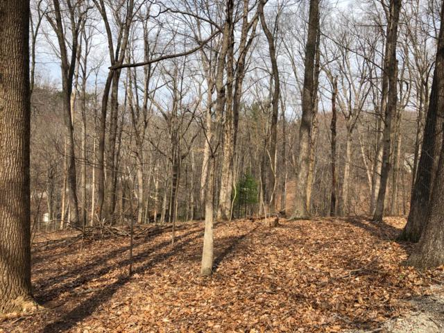369 Nootka Lane, Hide A Way Hills, OH 43107 (MLS #219007923) :: Brenner Property Group   Keller Williams Capital Partners