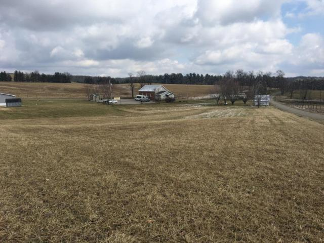 0 Coopermill Road, Hopewell, OH 43746 (MLS #219007940) :: Brenner Property Group | Keller Williams Capital Partners