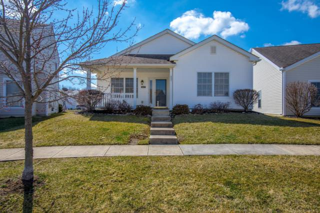 6097 Bristol Ridge Drive, Canal Winchester, OH 43110 (MLS #219008003) :: RE/MAX ONE