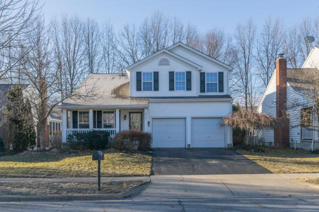 6161 Preve Ridge Drive, New Albany, OH 43054 (MLS #219008011) :: RE/MAX ONE