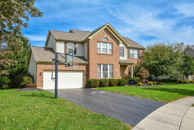 7034 Violet Veil Court, Dublin, OH 43016 (MLS #219008019) :: Signature Real Estate