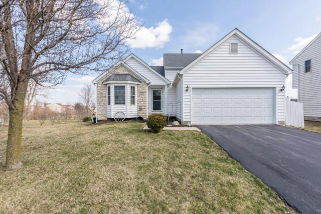 9300 Sandpiper Court, Orient, OH 43146 (MLS #219008193) :: Brenner Property Group | Keller Williams Capital Partners