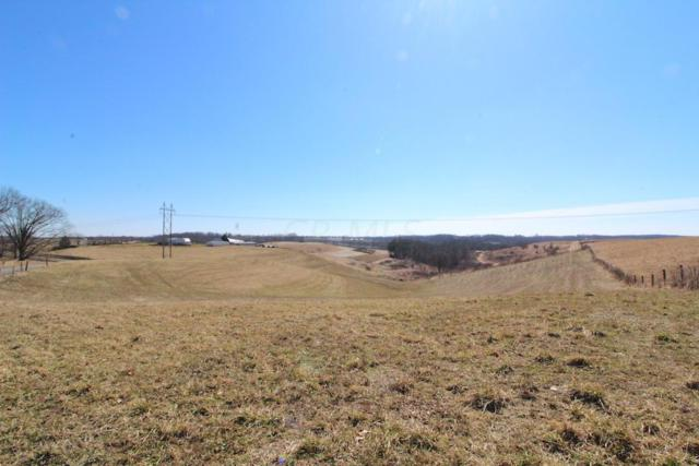 4700 Foster Road, Dresden, OH 43821 (MLS #219008224) :: Brenner Property Group | Keller Williams Capital Partners