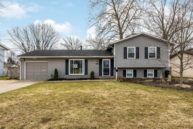 1301 Yellowwood Drive, Columbus, OH 43229 (MLS #219008228) :: The Raines Group
