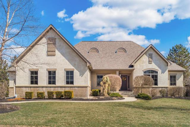 8204 Davington Drive, Dublin, OH 43017 (MLS #219008323) :: RE/MAX ONE