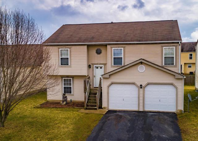 964 Drayson Drive, Galloway, OH 43119 (MLS #219008334) :: Shannon Grimm & Partners