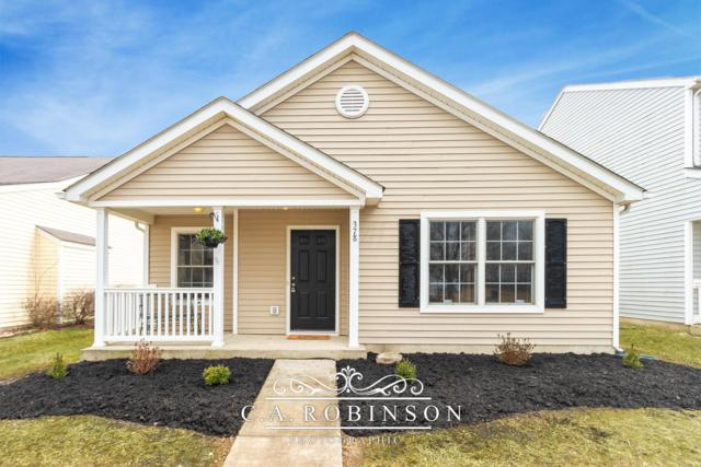 378 Impartial Lane #121, Galloway, OH 43119 (MLS #219008441) :: Shannon Grimm & Partners