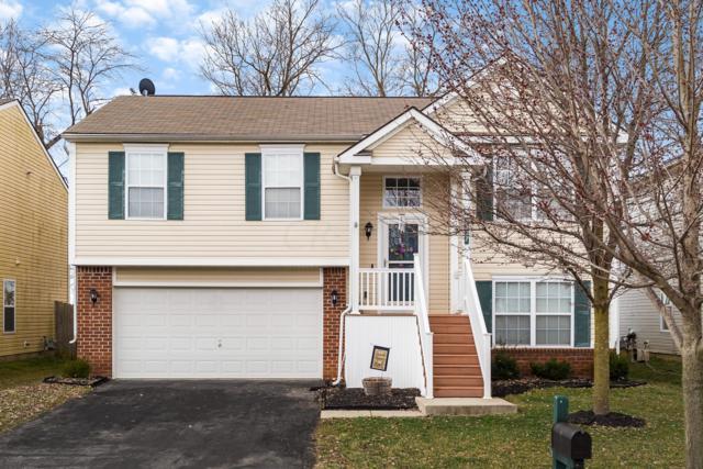 4637 Kenross Drive, Columbus, OH 43207 (MLS #219008600) :: Signature Real Estate