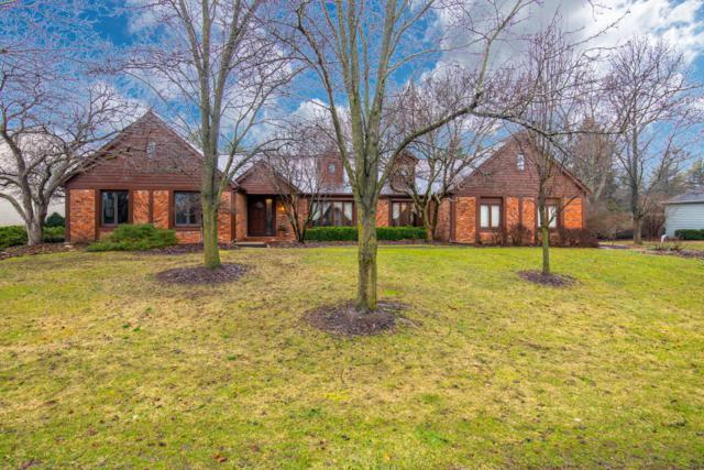 4235 Shire Cove Road, Hilliard, OH 43026 (MLS #219008760) :: Shannon Grimm & Partners