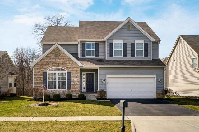 6738 Kellogg Drive, Powell, OH 43065 (MLS #219008795) :: The Raines Group
