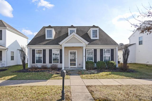 7137 Upper Albany Drive, New Albany, OH 43054 (MLS #219009096) :: Keller Williams Excel