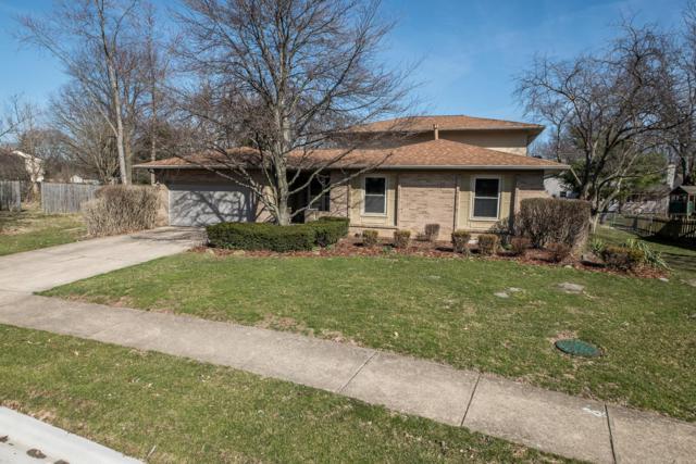 16 Lynette Place N, Westerville, OH 43081 (MLS #219009256) :: Keller Williams Excel