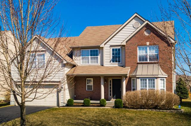 6869 Scioto Chase Boulevard, Powell, OH 43065 (MLS #219009275) :: Huston Home Team